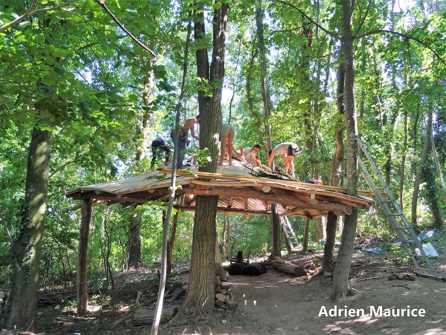 Le kiosque des gardiens de la forêt