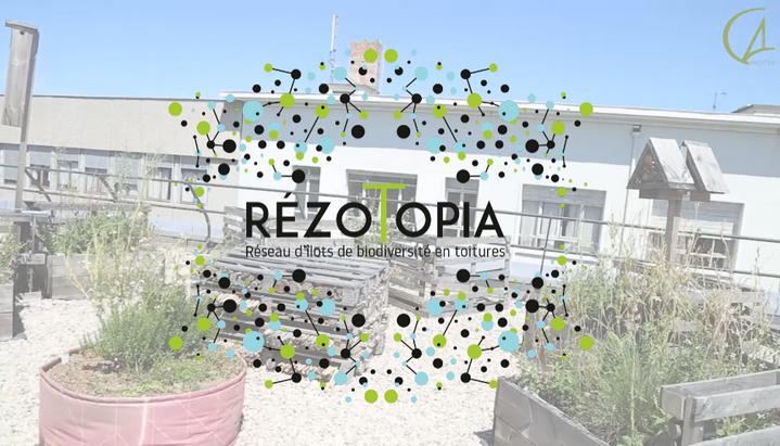 Soutenez RézoTopia : le réseau d'îlots...